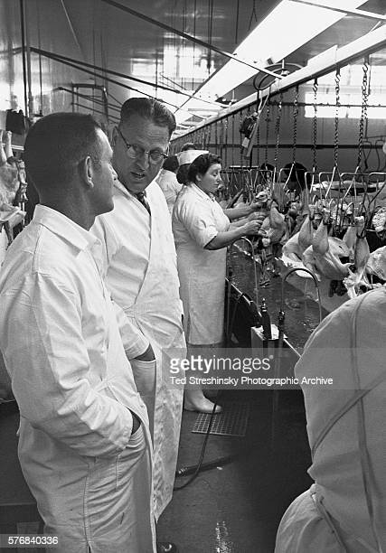 A food inspector and manager watch workers butcher turkeys on a conveyor belt in Turlock California