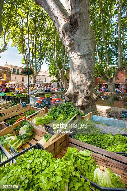 Food Market in Cucuron, Provence