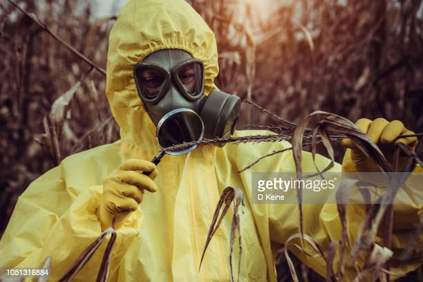 gmo food - weaponry stock pictures, royalty-free photos & images