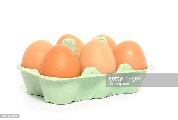 Food, Poultry, Eggs, 6 brown hens eggs in carton.