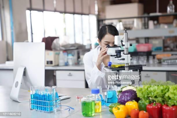 food science and technology research - kontaminierung stock-fotos und bilder