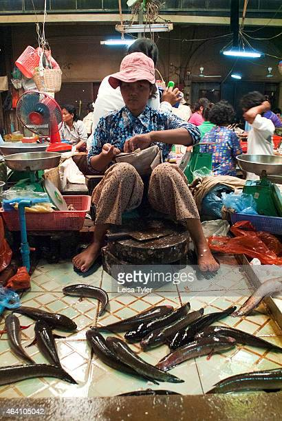 A food vendor selling live catfish at Psar Chaa market in Siem Reap a chaotic jumble of bodies and fresh produce plonked higgledypiggledy under a tin...