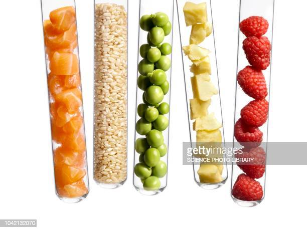 foods in test tubes - legume family stock pictures, royalty-free photos & images