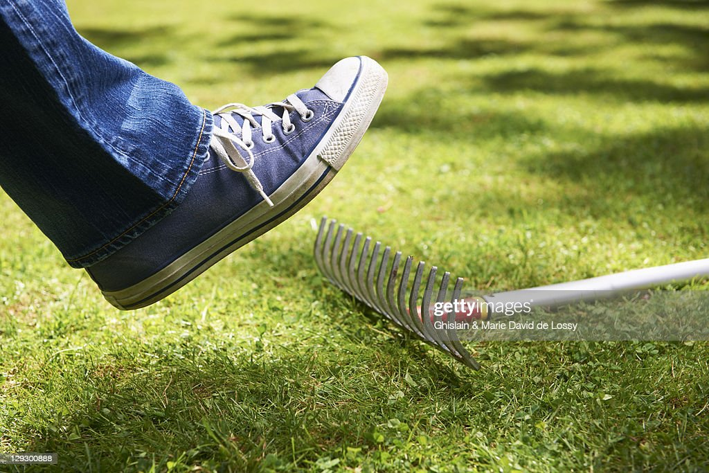 Foot about to step on rake : Stock Photo