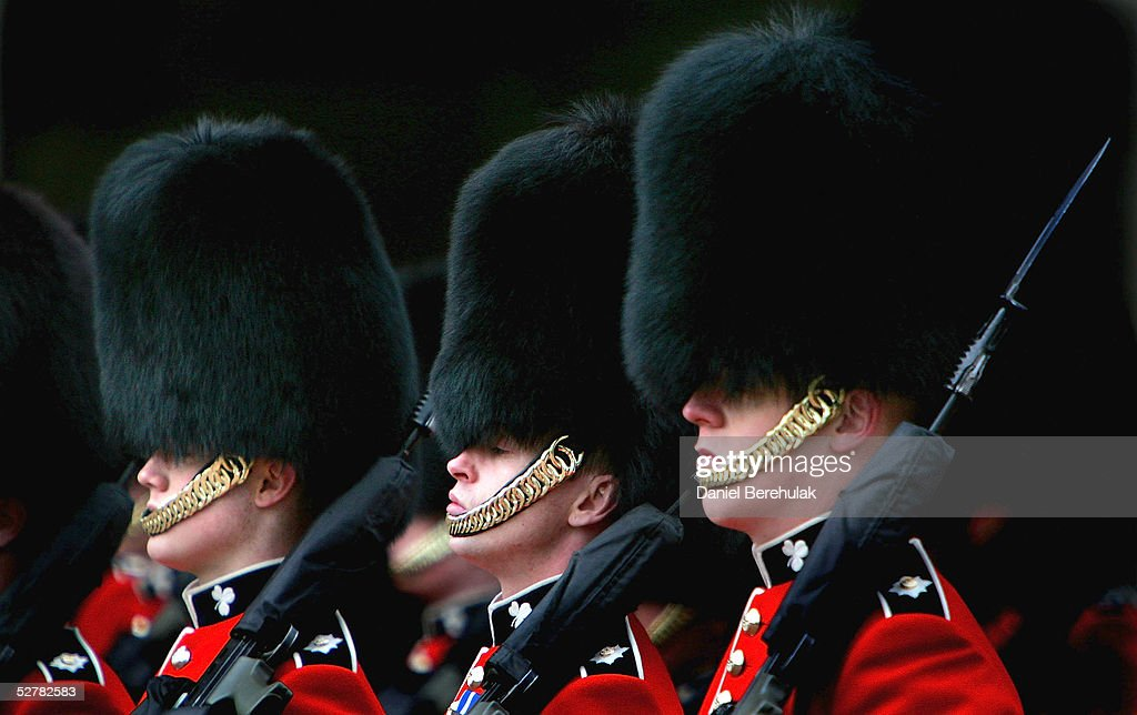 army tests fake bearskins for ceremonial hatsの写真およびイメージ