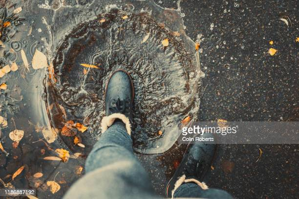 foot in puddle - human foot stock pictures, royalty-free photos & images