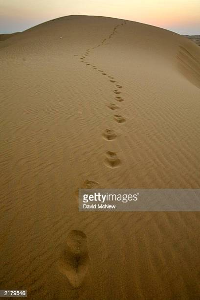 Foot prints wander across the Algodones Dunes also known as the Imperial Dunes or American Sahara on July 20 near Glamis California in the Colorado...