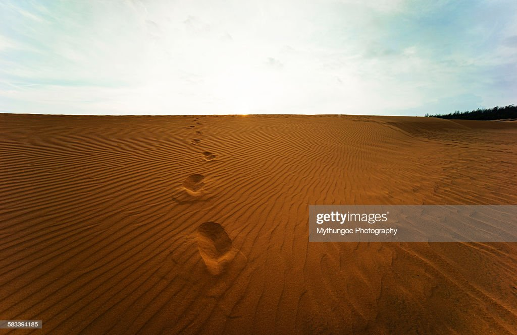 Foot steps on sands : Stock Photo