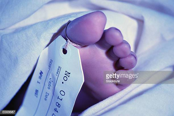 foot with toe tag - morgue woman stock pictures, royalty-free photos & images