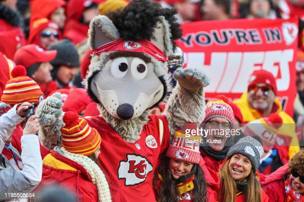 AFC Playoffs Kansas City Chiefs mascot KC Wolf with fans in stands during game vs Tennessee Titans at Arrowhead Stadium Kansas City MO CREDIT David E...