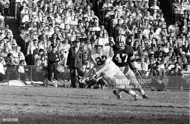 Baltimore Colts Raymond Berry in action making catch vs Green Bay Packers Baltimore MD CREDIT Walter Iooss Jr