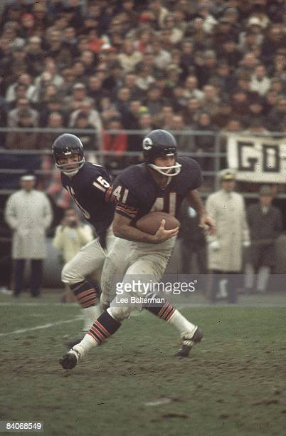Chicago Bears Brian Piccolo in action taking hand off from QB Virgil Carter vs San Francisco 49ers Chicago IL CREDIT Lee Balterman