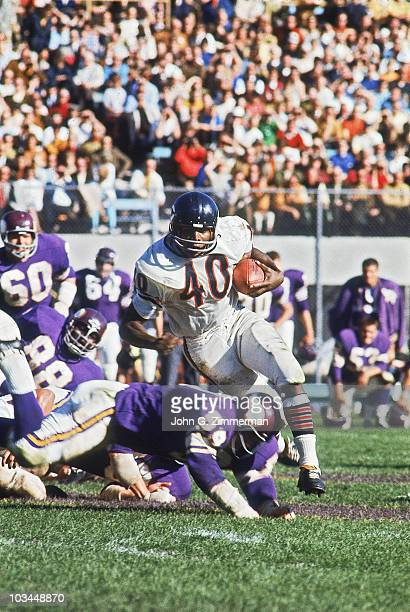Chicago Bears Gale Sayers in action rushing vs Minnesota Vikings Bloomington MN CREDIT John G Zimmerman