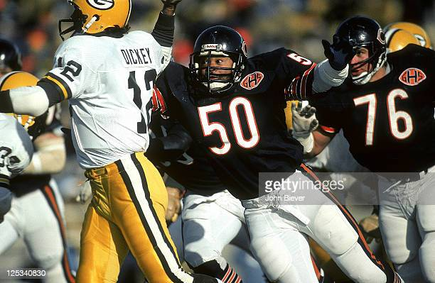 Chicago Bears Mike Singletary in action defense vs Green Bay Packers QB Lynn Dickey at Lambeau Field Green Bay WI12/4/1983 CREDIT John Biever