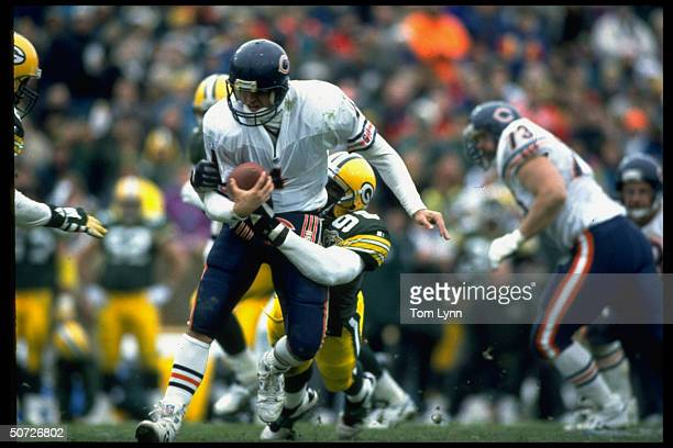 Chicago Bears QB Jim Harbaugh in action during sack vs Green Bay Packers Tony Bennett