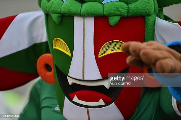 A football fan attends the Brazil 2014 FIFA World Cup CONCACAF qualifier match between Mexico and El Salvador at the Corona Stadium in Torreon...