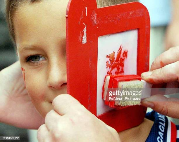 Football fan Tom James from Tenby has his face painted outside Millennium Stadium, Cardiff, Saturday September 3, 2005. Wales face England in the...
