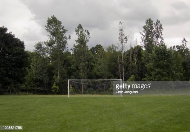 football goal against woods - campo de futebol - fotografias e filmes do acervo