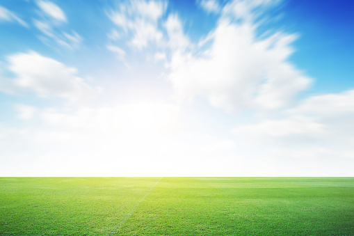 Football green field with cloud blue sky background. Landscape outdoor sport 1146598796