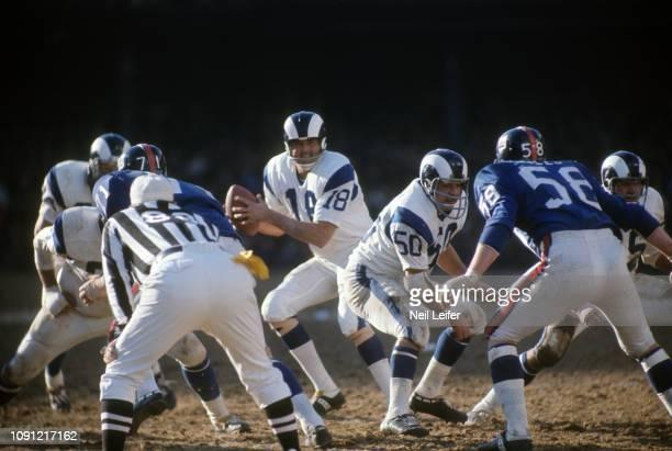 Los Angeles Rams QB Roman Gabriel in action vs New York Giants at Yankee Stadium. Bronx, NY CREDIT: Neil Leifer