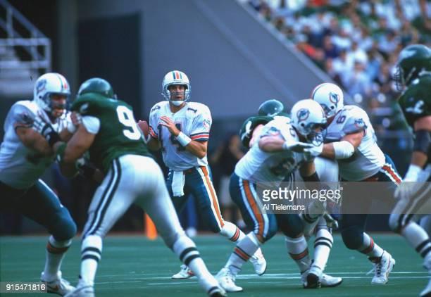 Miami Dolphins QB Doug Pederson in action vs Philadelphia Eagles at Veterans Stadium Philadelphia PA CREDIT Al Tielemans