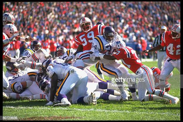 Minn Vikings Herschel Walker in action scoring TD vs New England Patriots