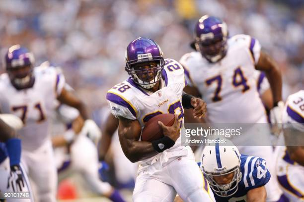 Minnesota Vikings Adrian Peterson in action, rushing vs Indianapolis Colts during preseason. Indianapolis, IN 8/14/2009 CREDIT: Andrew Hancock