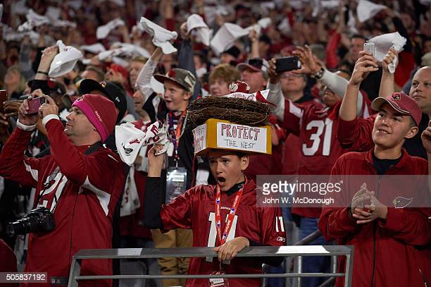 NFC Playoffs Arizona Cardinals young fan wearing hat on head that reads PROTECT THE NEST in stands during game vs Green Bay Packers at University of...