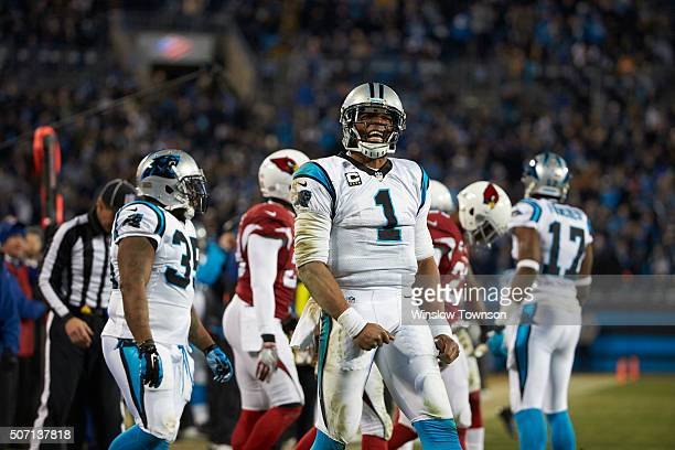 NFC Playoffs Carolina Panthers QB Cam Newton victorious on field during game vs Arizona Cardinals at Bank of America Stadium Charlotte NC CREDIT...