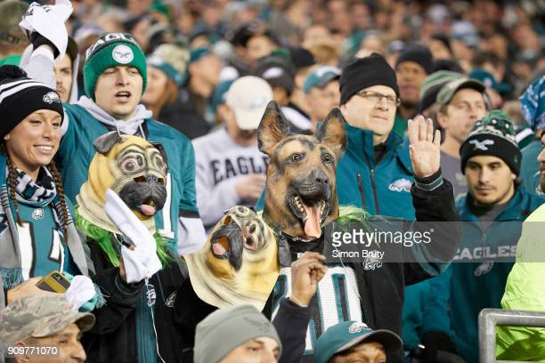 NFC Playoffs Philadelphia Eagles fans in stands wearing dog masks during game vs Minnesota Vikings at Lincoln Financial Field Philadelphia PA CREDIT...