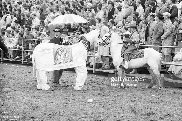NFL Championship Baltimore Colts fans from Colts Corral No 1 supporters club wearing twoperson horse costume during game vs New York Giants at...