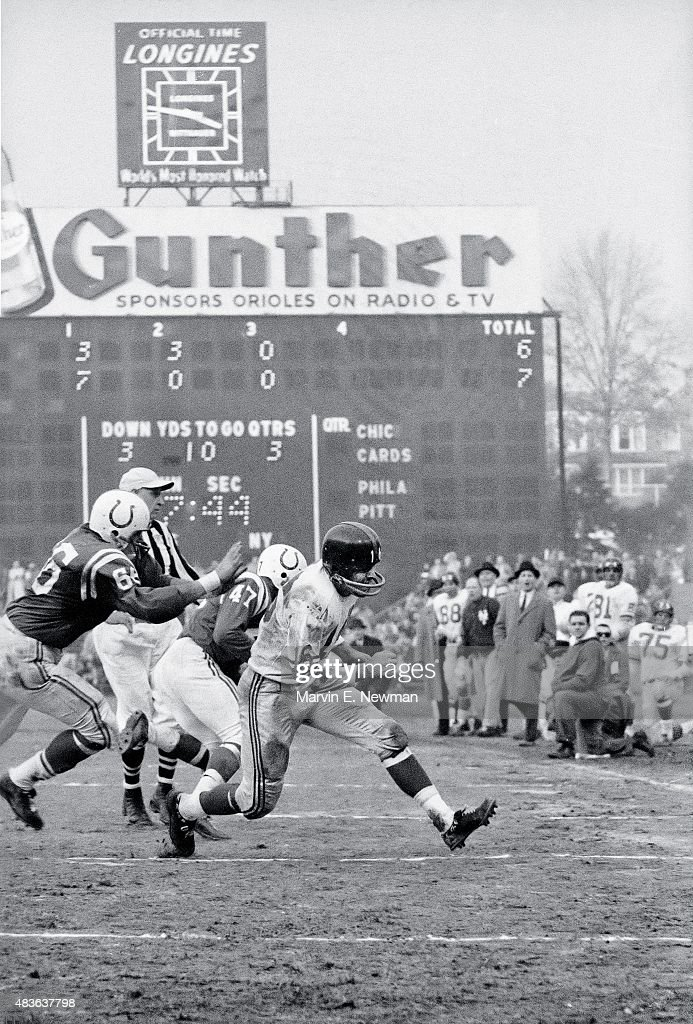 New York Giants Frank Gifford (16) in action, rushing vs Baltimore Colts at Memorial Stadium. Marvin E. Newman X6456 )
