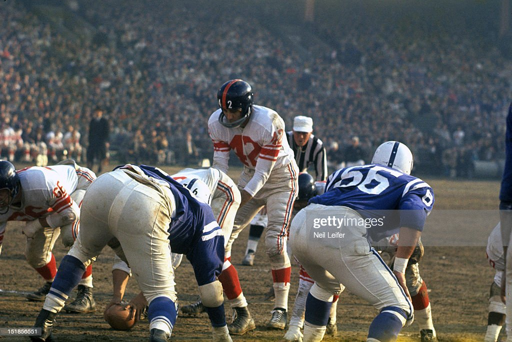 New York Giants QB Chuck Conerly (42) at line of scrimmage before snap vs Baltimore Colts at Memorial Stadium. Neil Leifer D83072 )