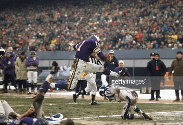 NFL Playoffs Minnesota Vikings QB Joe Kapp in action rushing into endzone for touchdown vs Los Angeles Rams at Metropolitan Stadium Sequence...