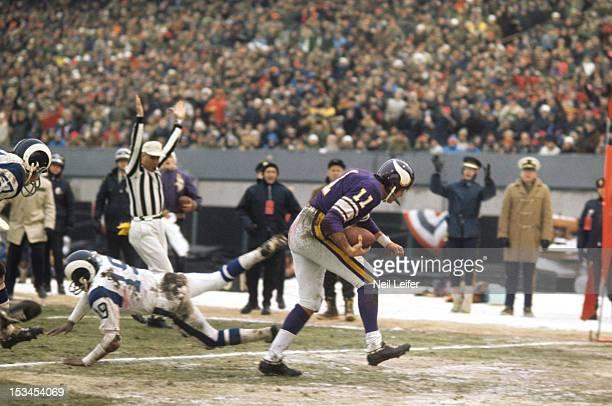NFL Playoffs Minnesota Vikings QB Joe Kapp in endzone after scoring touchdown vs Los Angeles Rams at Metropolitan Stadium Sequence Bloomington MN...