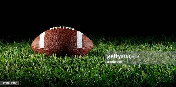 football on grass - american football pitch stock pictures, royalty-free photos & images