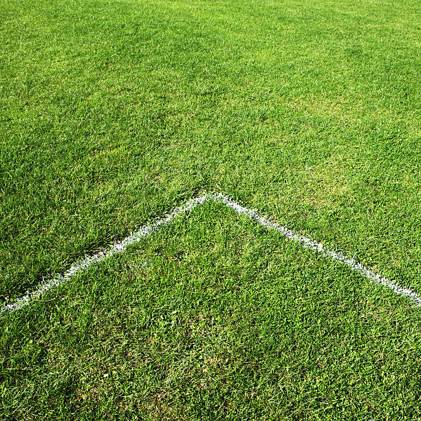Football pitch line