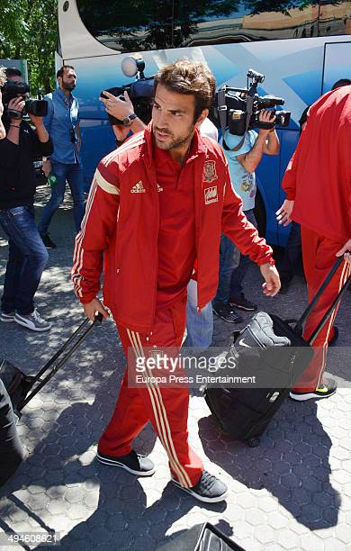 Football player Cesc Fabregas of the Spanish National Football team are seen on May 29 2014 in Seville Spain