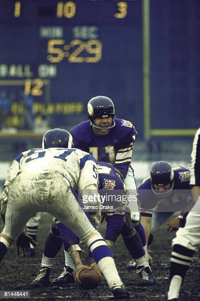 Football playoffs Minnesota Vikings QB Joe Kapp calling signals before snap at line of scrimmage during game vs Los Angeles Rams Bloomington MN