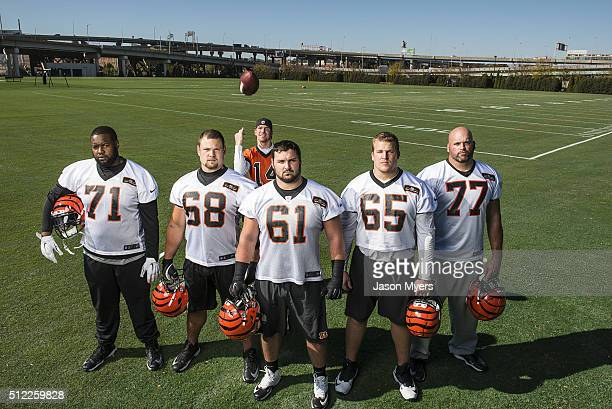 Portrait of Cincinnati Bengals offensive line offensive tackle Andre Smith offensive guard Kevin Zeitler center Russell Bodine offensive guard Clint...