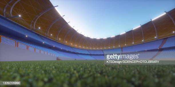 football stadium, illustration - sports league stock pictures, royalty-free photos & images