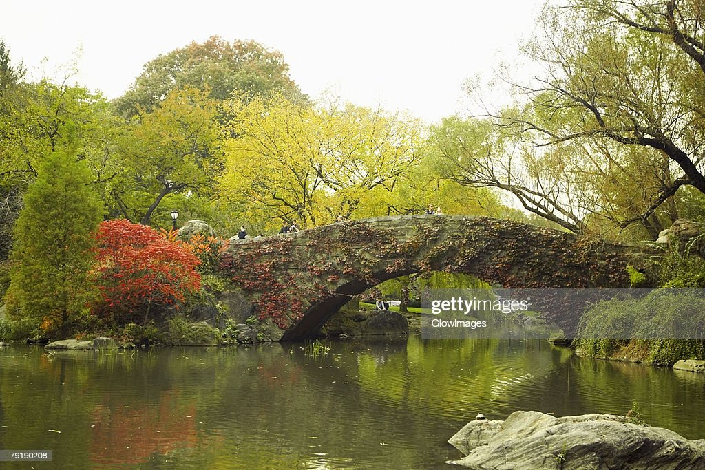 Footbridge across a river, Central Park, Manhattan, New York City, New York State, USA : Foto de stock