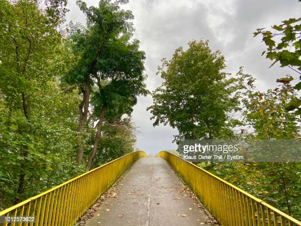 footbridge amidst trees against sky - klaus-dieter thill stock-fotos und bilder