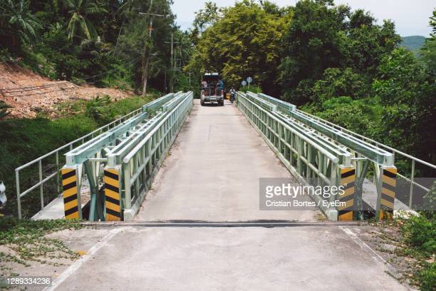 footbridge amidst trees and plants - bortes stock pictures, royalty-free photos & images