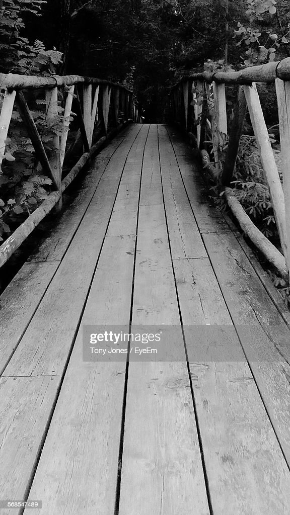 Footbridge Amidst Trees In Forest : Stock Photo