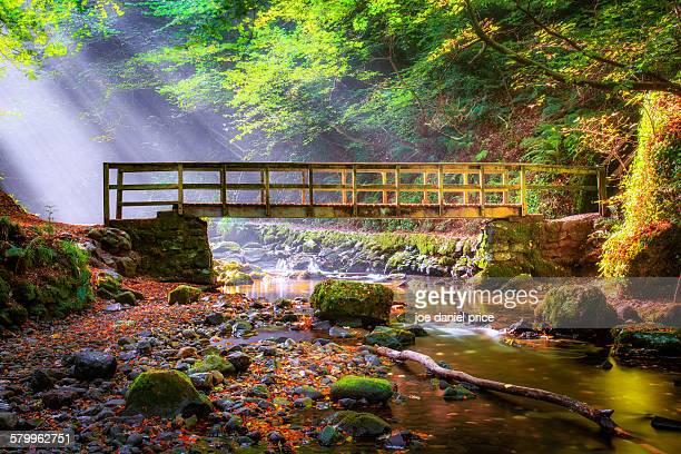 footbridge, glenoe, northern ireland - footbridge stock photos and pictures