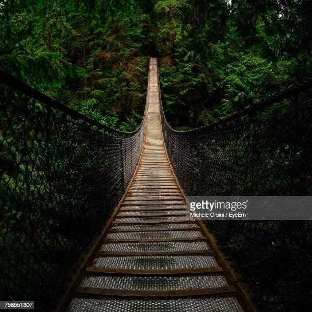footbridge in forest - suspension bridge stock pictures, royalty-free photos & images