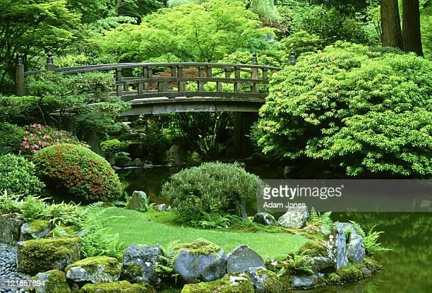 footbridge: japanese garden  portland, oregon      - 日本庭園 ストックフォトと画像