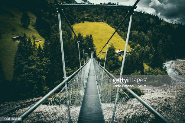 footbridge leading towards mountains - man made structure stock pictures, royalty-free photos & images