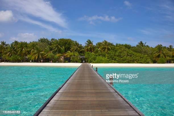 footbridge of paradise island in maldives - massimo pizzotti foto e immagini stock